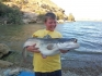 Sumy z Ebro